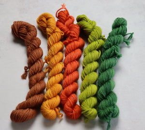 Green/brown mini skein set dk