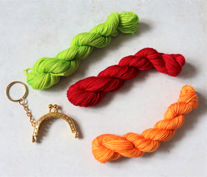 Crochet mini purse keyring kit