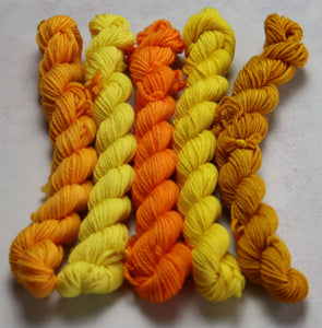 Yellow mini skein set DK merino/nylon