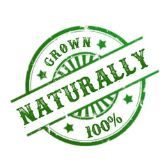 Naturally Grown Coffee From Organic Certified Coffee Farms