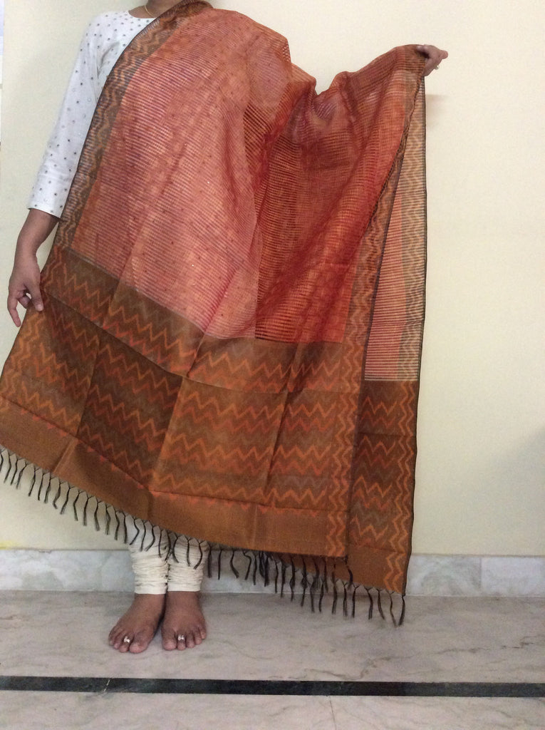 Pochampally Ikat Silk Dupatta - IP_DU_027