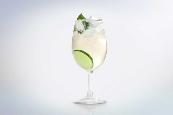 Bruni Collins Gin & Tonic