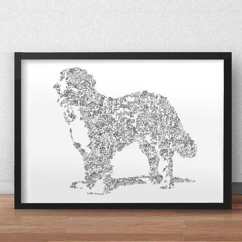 bernese mountain dog art print with dog breed caracteristics