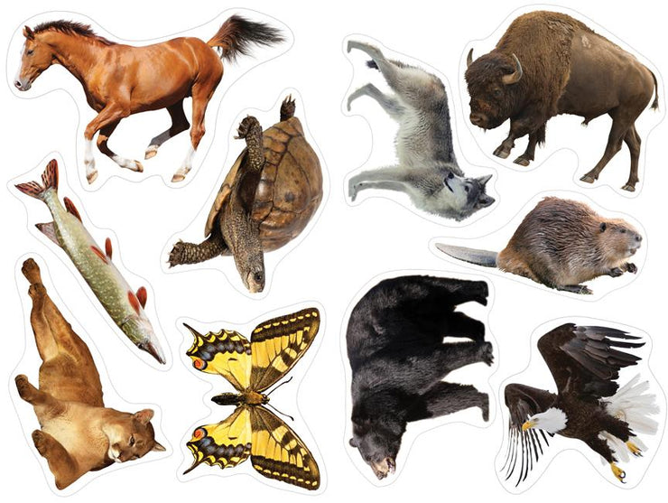 Animals Decoration Pack