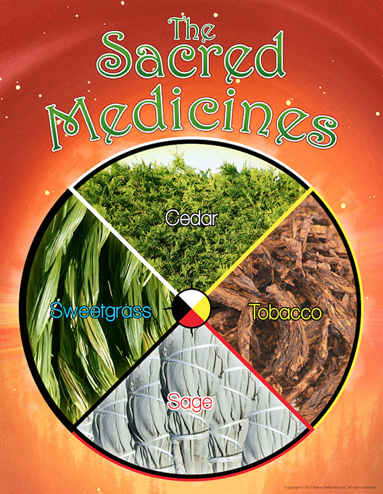 The Sacred Medicines Poster