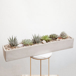 Crystal Succulent Planter