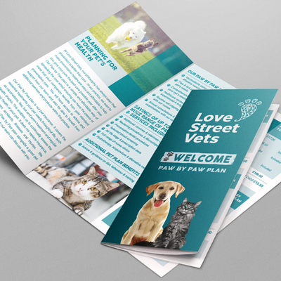 Vet Folded Leaflet Artwork