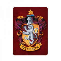 Harry Potter Fridge Magnet – Various Designs available.