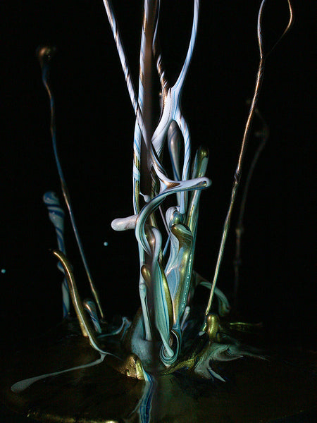 Sound of Ikebana, Winter