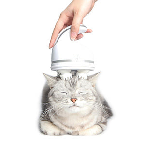 Pet Intelligent Charging Cat Massager