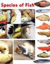 12 Style 3D Artificial Cat Catnip Toys Fish Plush Dog Pillow Pet Cat Dog Chew Scratch Pillow Toys Sleeping Cushion 1pc