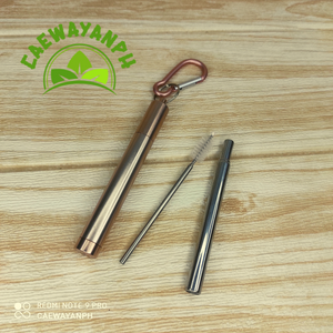 Stainless Collapsible Straw