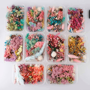 1 Box Real Dried Flower Dry Plants For Epoxy Resin Pendant Necklace Jewelry Making Craft DIY Accessories