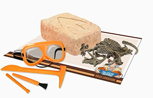 Uncle Milton Dr. Steve Hunters - Paleo Expedition Dino Dig Excavation Kit Triceratops - 12Piece - Scientific Educational Toy