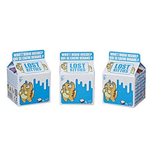 Load image into Gallery viewer, Lost Kitties Blind Box 3 Pack