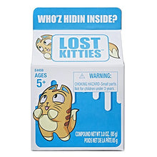 Load image into Gallery viewer, Lost Kitties Blind Box Assortment - (1 mystery random pack)