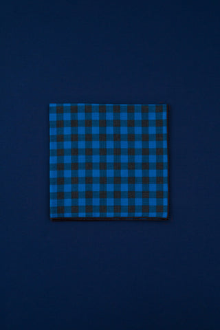 blue & brown check