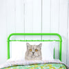 Otto the British Short Hair Cat Pillowcase