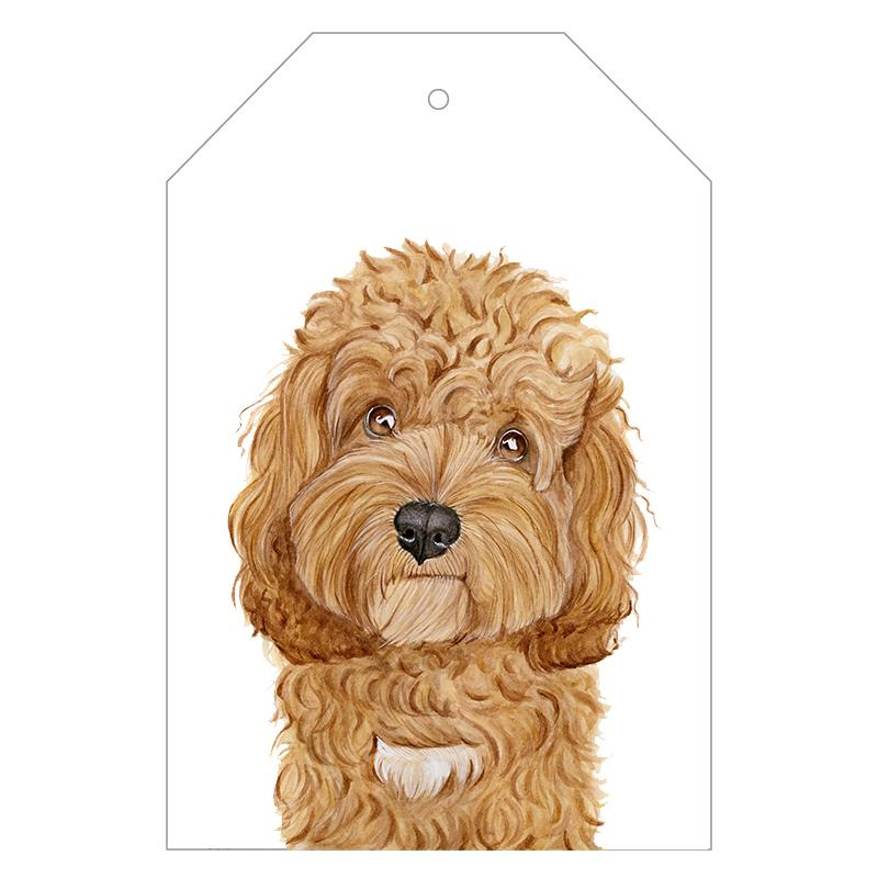 Carrie the Cavoodle Gift Tags