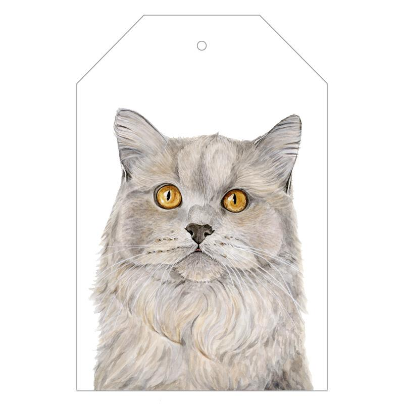 Otto the British Short Hair Cat Gift Tags