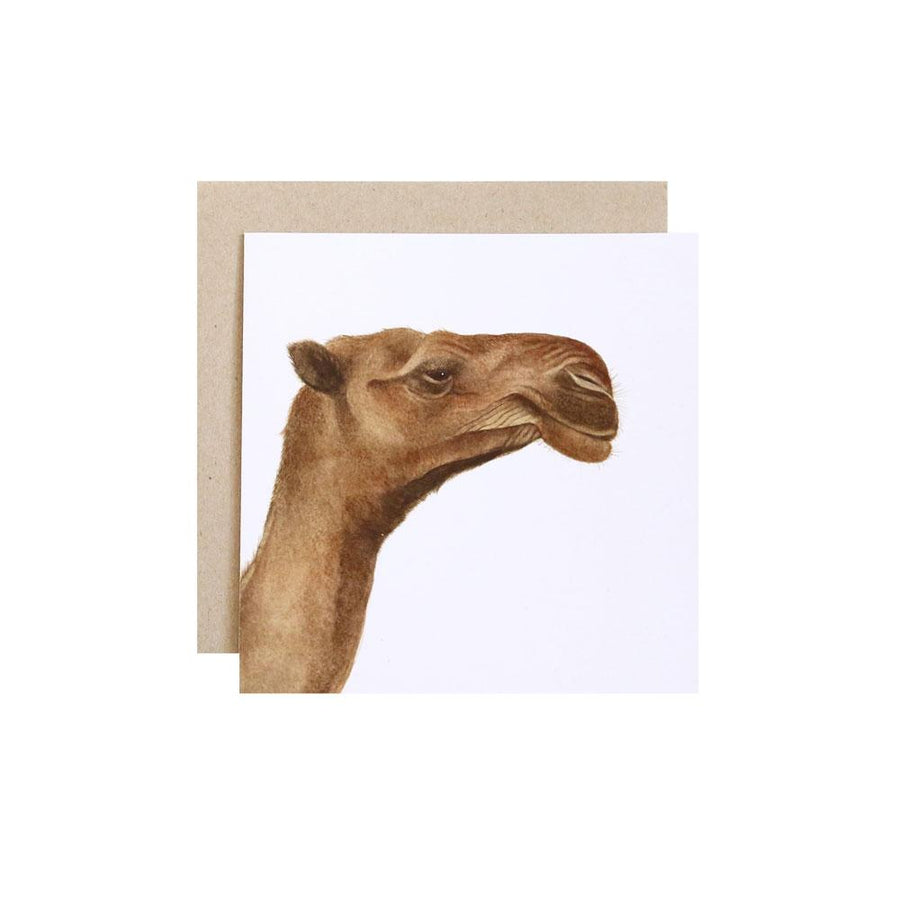 Clarence the Camel Greeting Card