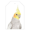 Colin the Cockatiel Gift Tags