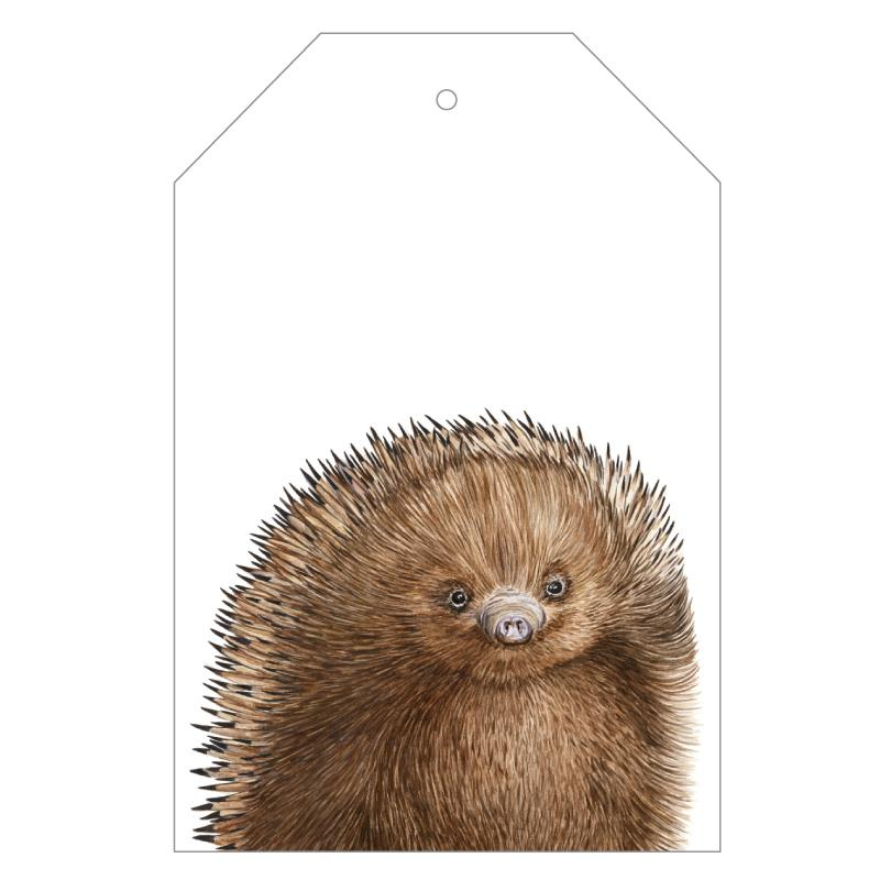 Eddie the Echidna Gift Tags
