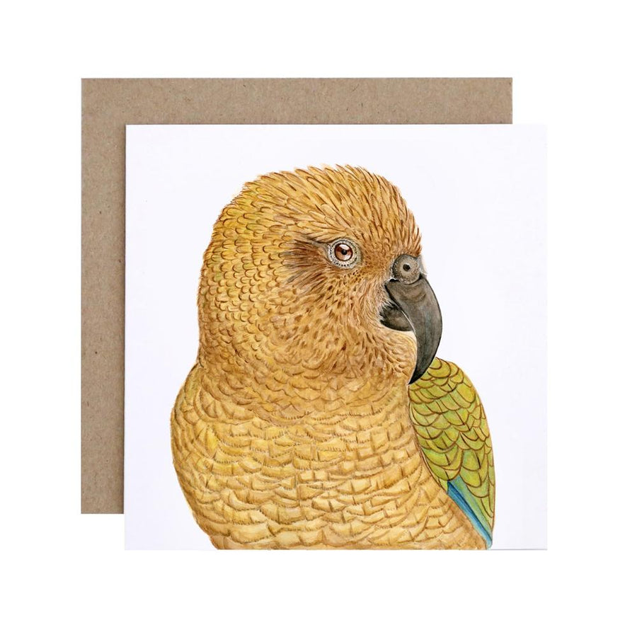 Kai the Kea Greeting Card