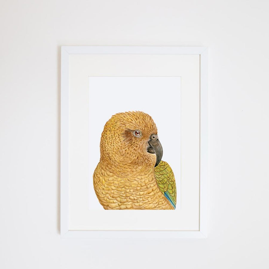 Kai the Kea Print
