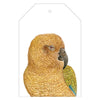 Kai the Kea Gift Tags