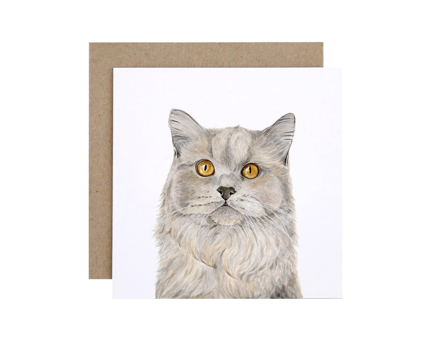 Otto the British Short Hair Cat Greeting Card
