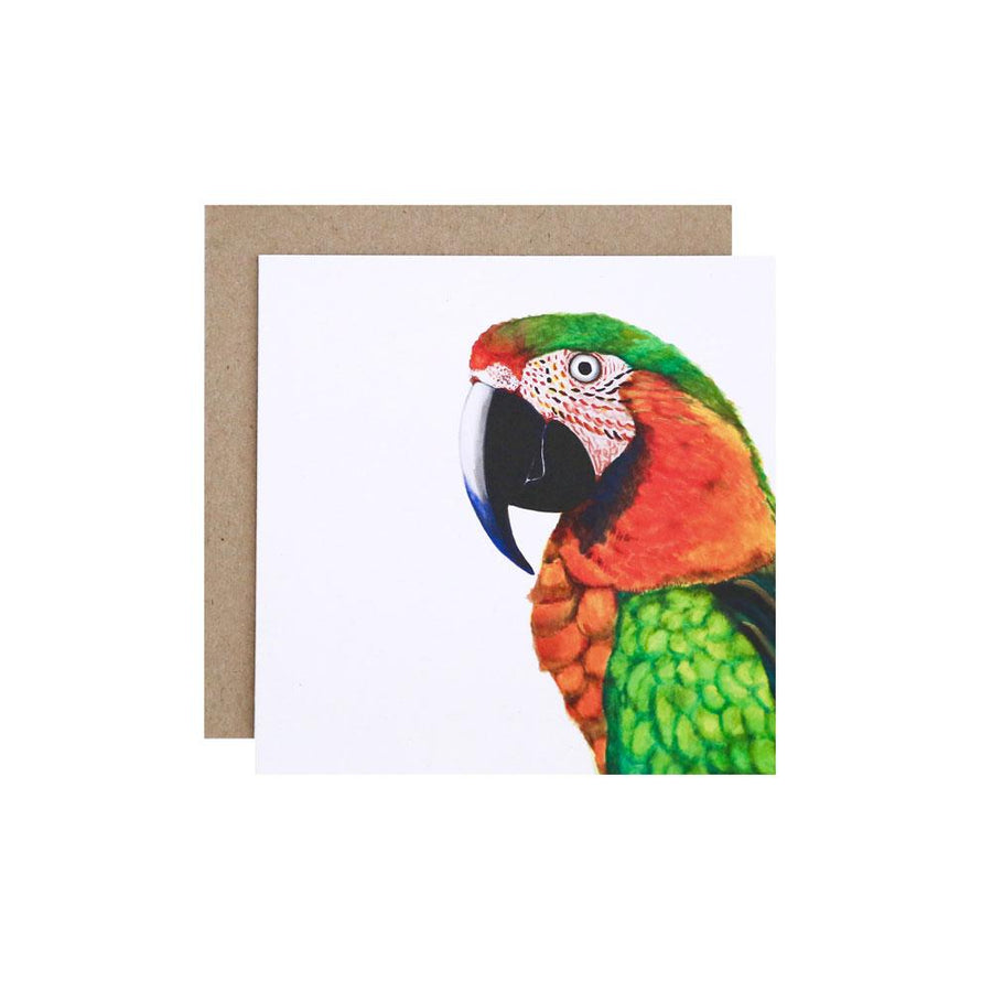 Percy the Parrot Greeting Card