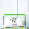 Chloe the Schnauzer Pillowcase