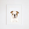 Tank the English Bulldog Print