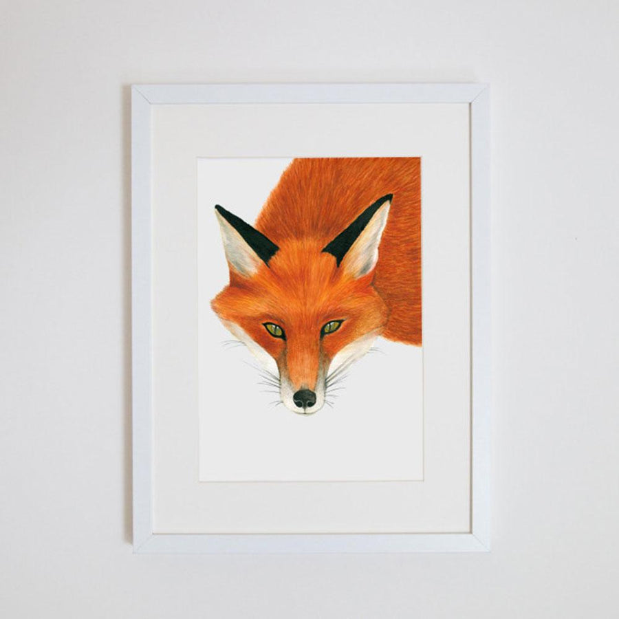 Frankie the Fox Print