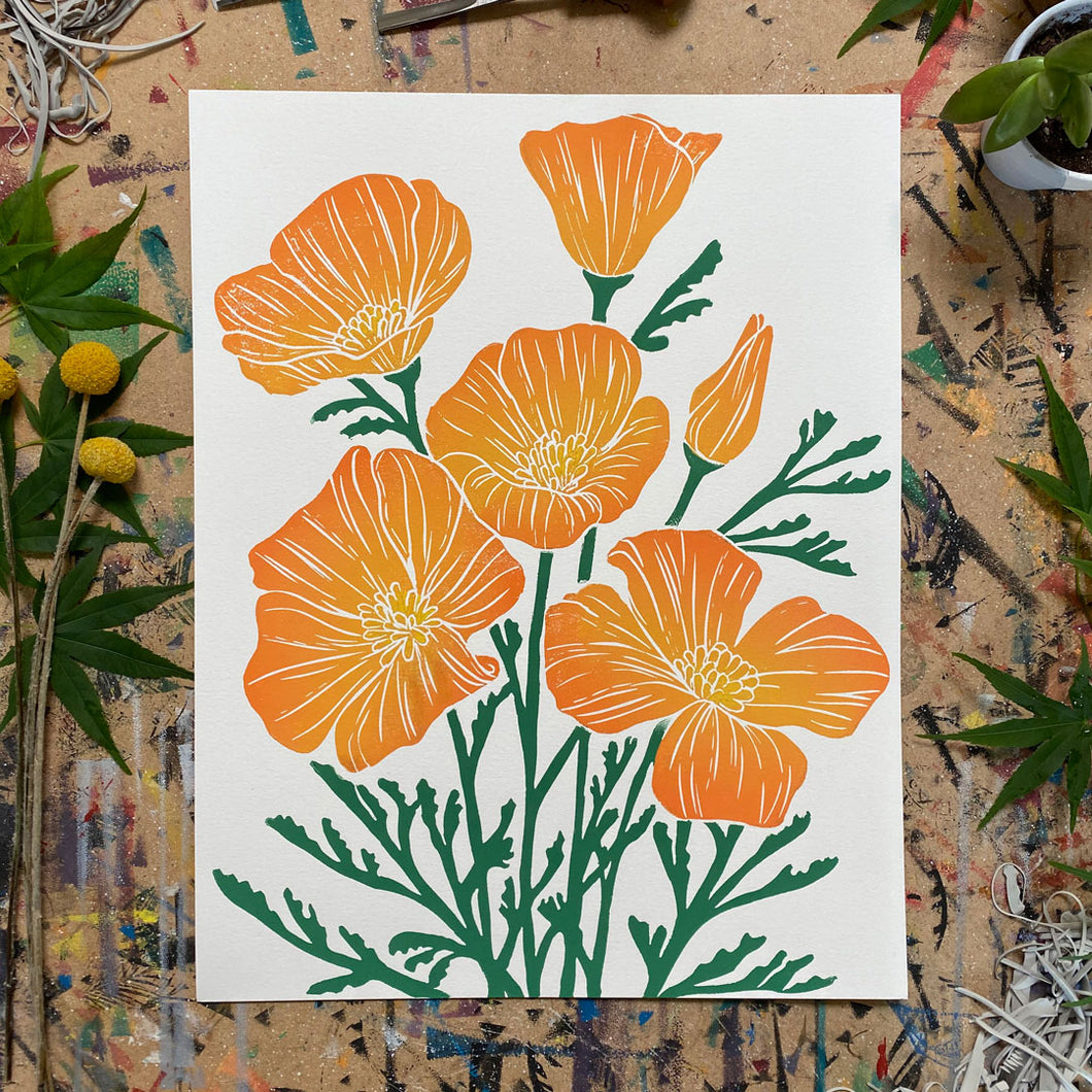 Golden Poppies | 11x14