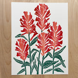"Castilleja (Indian Paintbrush) | 11x14"" Print"