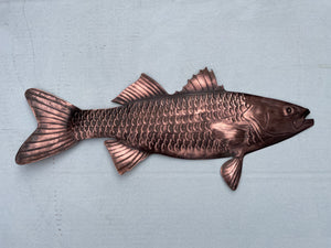 Striped Bass Wall Hanging