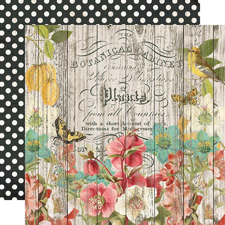 SS-14704 Simple Vintage Cottage Fields - Natural Beauty