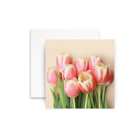 Tulips (New design)