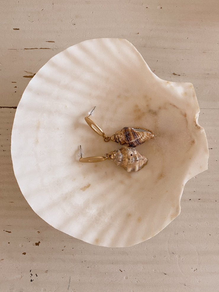 Small Shell Earrings