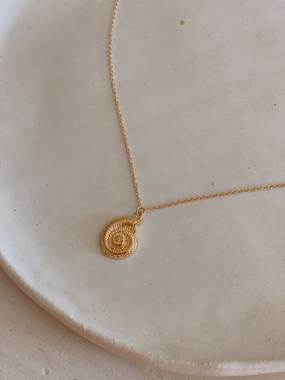 Swirl Shell Necklace