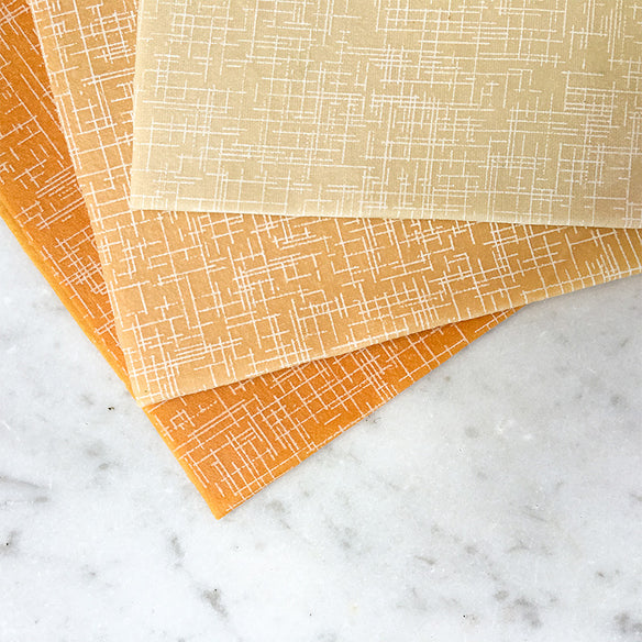 3 x Medium Beeswax Wraps | Palm Beach Collection