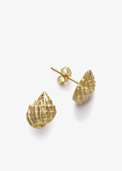 Conch Shell Earrings Gold