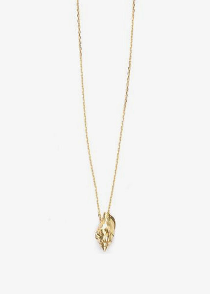 Floating Shell Necklace Gold