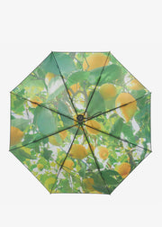 Lemon Umbrella