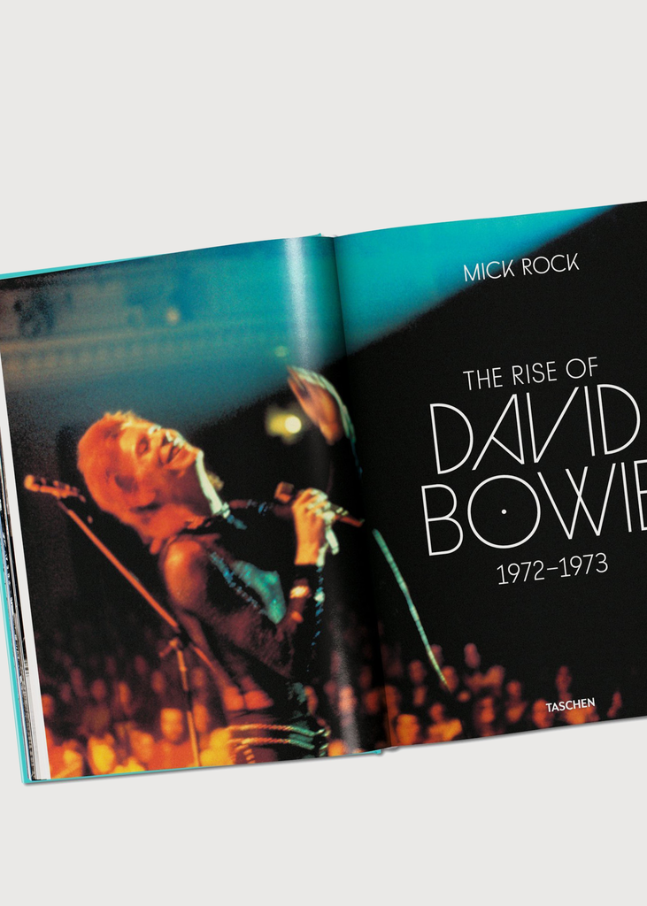 The Rise of David Bowie Book