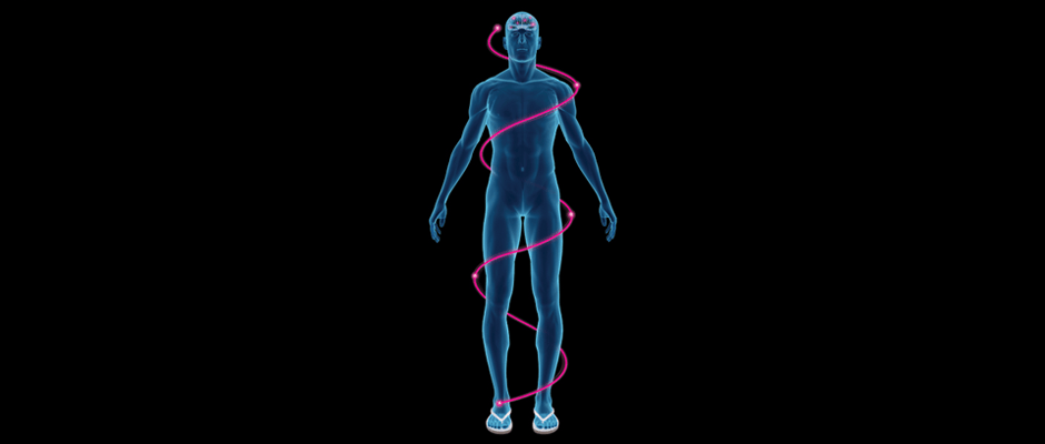 neurorthotic paradigm