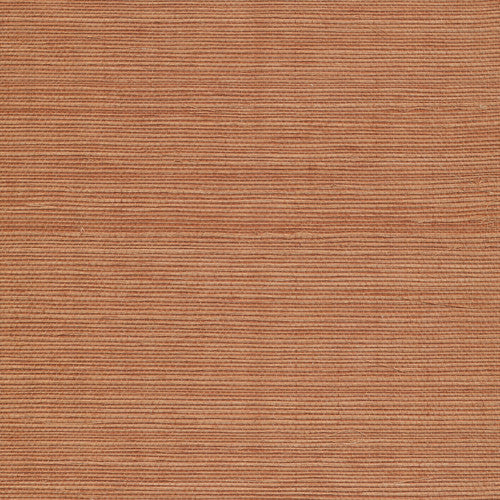 Grasscloth in Outback