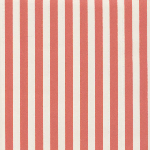 Greg Natale Pinstripe in Coral